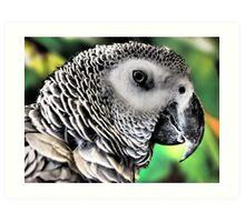 Feathered Friend Art Print