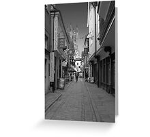 This way to the Cathedral  Greeting Card
