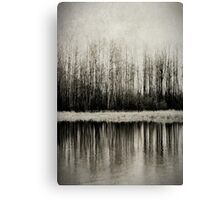Solitude Revisited Canvas Print