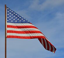 American Flag waving by pixtaker415