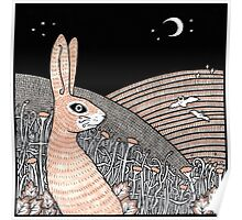 Moon Gazing Hare Poster