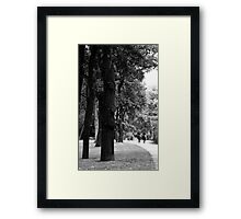 A casual clop through the Park ... Framed Print