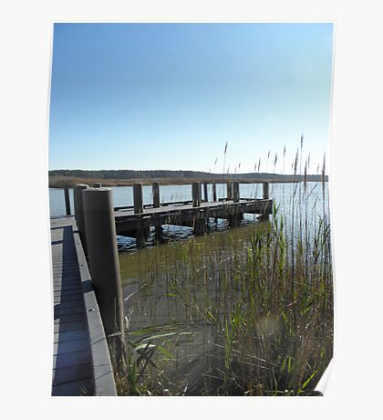 Surry County Dock Poster