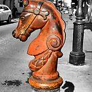 Horse Head by rosaliemcm