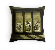 A View From Blarney Castle Throw Pillow