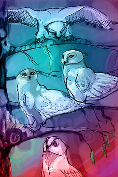 owls by soogie