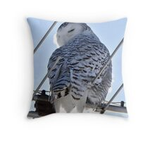 Perfect Perch Throw Pillow