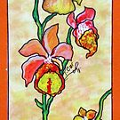 WARM COLOR FLOWER STUDY by Tammera
