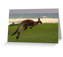 Skippy on the move Greeting Card
