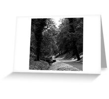 To sit, or walk across ... Greeting Card