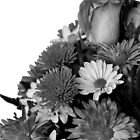 Half of Floral Arrangement in B &amp; W by Sherry Hallemeier