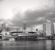 Colonial Telstra Etihad Stadium Dome by Norman Repacholi