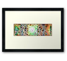 2501:1212 Framed Print