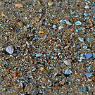 Tiny broken shells by Stephen Monro