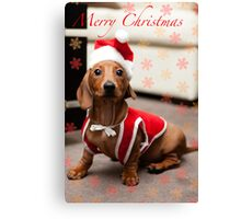 Merry Christmas Sausage Dog Canvas Print