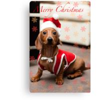 Merry Christmas Sausage Dog Canvas Print