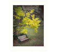 Quiet garden bench Art Print