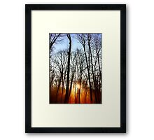 Morning Rays Framed Print