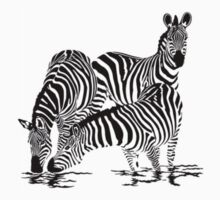 Zebra T-Shirt by parko