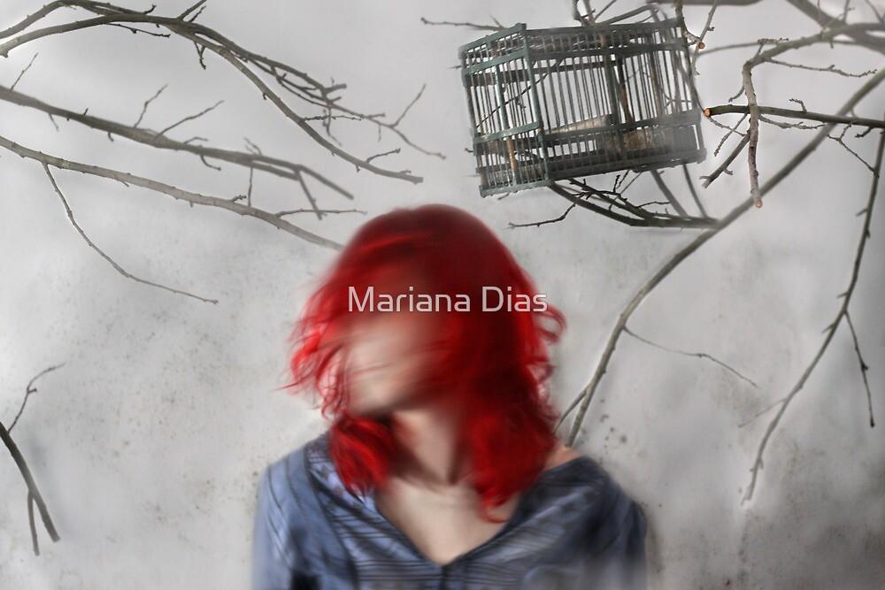 Attrape-Rêves by Mariana Dias