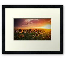 Colors Of A Late Evening Framed Print
