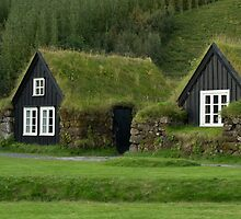 Traditional iclandic houses with grassy roofs. by vkph