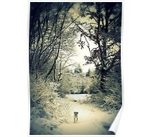 Winter Walk Poster