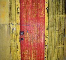 Door in Door by Peter Baglia