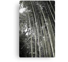 Hakone Bamboo 1 Canvas Print