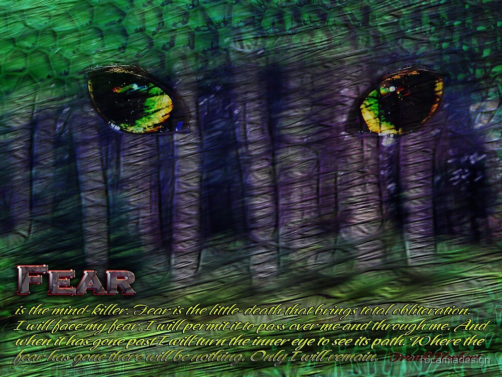Fear by rocamiadesign