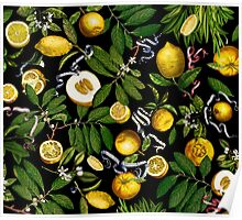 Lemon Tree - Black Poster