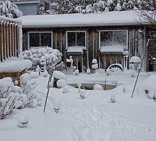 Backyard Snowfall by greyrose