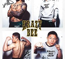 krazy bee gym by grappler