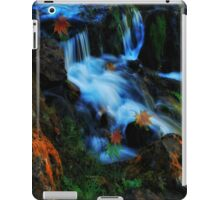 Willow River Falls 4 iPad Case/Skin