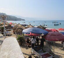 A Shelter at the Beach - Una Protección en la Playa by PtoVallartaMex