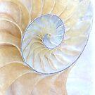 Nautilus Frost by Ann Garrett