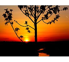 Sunset on The Snake River-Twin Falls Idaho, USA Photographic Print