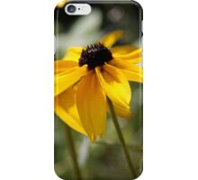 Beckie - prints and iPhone/iPod cases iPhone Case/Skin
