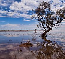 Beauty of the Outback - Wilcannia, NSW by Malcolm Katon