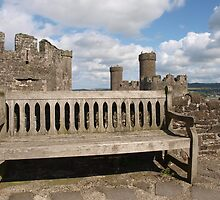 Bench in the Castle by kalaryder