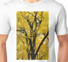 Fall colors Unisex T-Shirt
