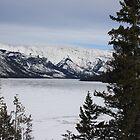 Winter mountain II by dsimon