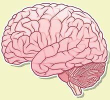 pinky brain by satoriartwork