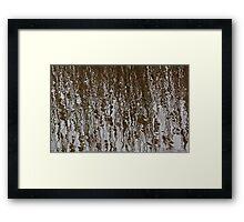 Marsh Grass Reflections 2 Framed Print
