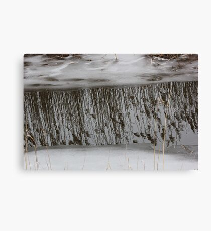 Marsh Grass Reflections with Ice 1 Canvas Print