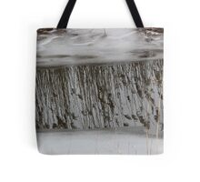 Marsh Grass Reflections with Ice 1 Tote Bag