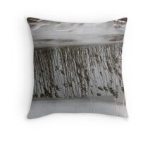 Marsh Grass Reflections with Ice 1 Throw Pillow