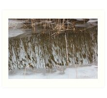 Marsh Grass Reflections with Ice 3 Art Print