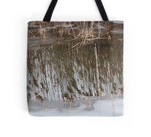 Marsh Grass Reflections with Ice 3 Tote Bag
