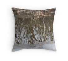 Marsh Grass Reflections with Ice 3 Throw Pillow